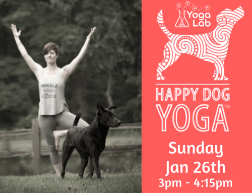 Happy Dog Yoga Charity Class: Jan 26